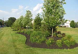 Active acres for Garden design 2 acres